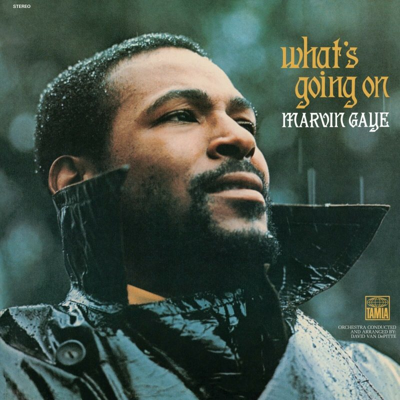 Marvin Gaye Vinyl Record Lps For Sale